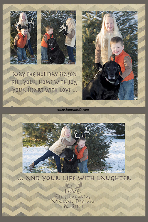 christmas-card-tamcam10-antlers-deer-funny-dog