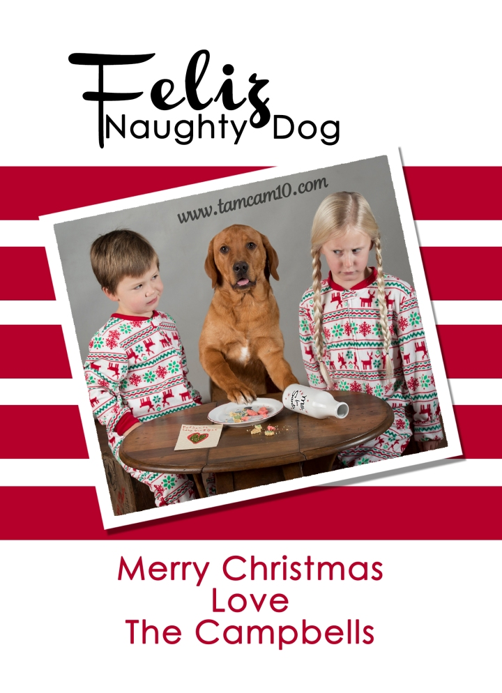 fleliz-naughty-dog-christmas-card-2016-tamcam10