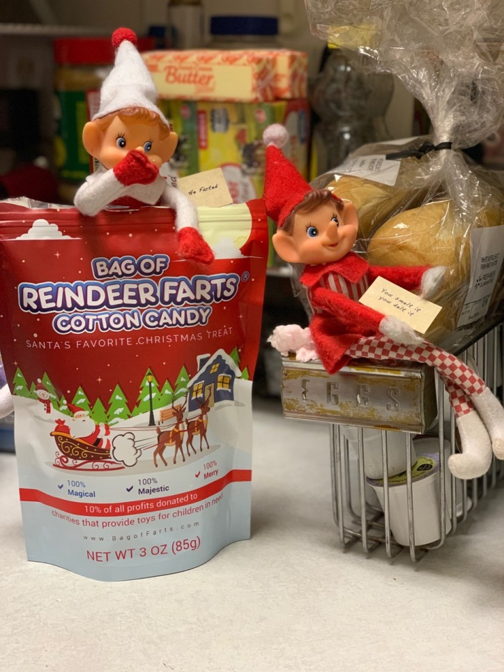 Elf on the Shelf Reindeer Farts tamcam10