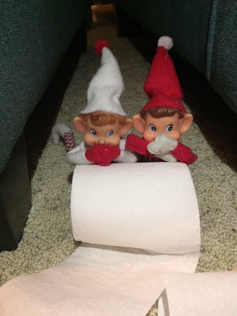 Elf on the Shelf TP the Christmas Tree tamcam10 3