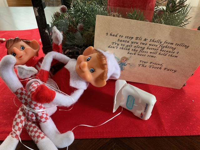 Elf on the Shelf Tooth Fairy tamcam10