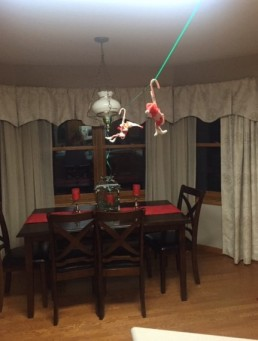 Elf on the Shelf tamcam10 Candy Cane Hang Glide