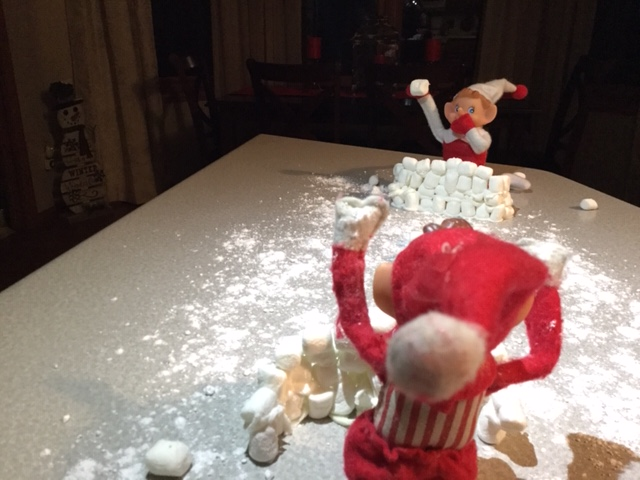 Elf on the Shelf Snowball Fight tamcam10 2