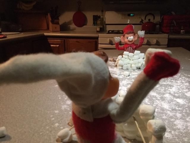Elf on the Shelf Snowball Fight tamcam10 4