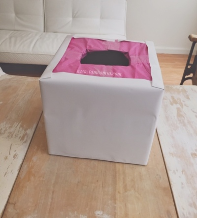 Cardboard box covered in white vinyl and topped with pink tissue paper