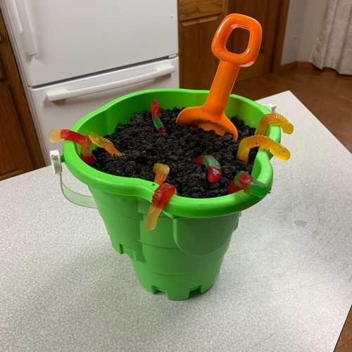 Dirt Pudding Cake What to Bring Family Reunion Pot Luck tamcam10