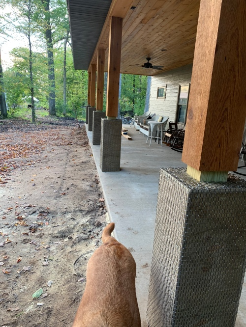 Front Porch, Cedar, Cement, Red Lab