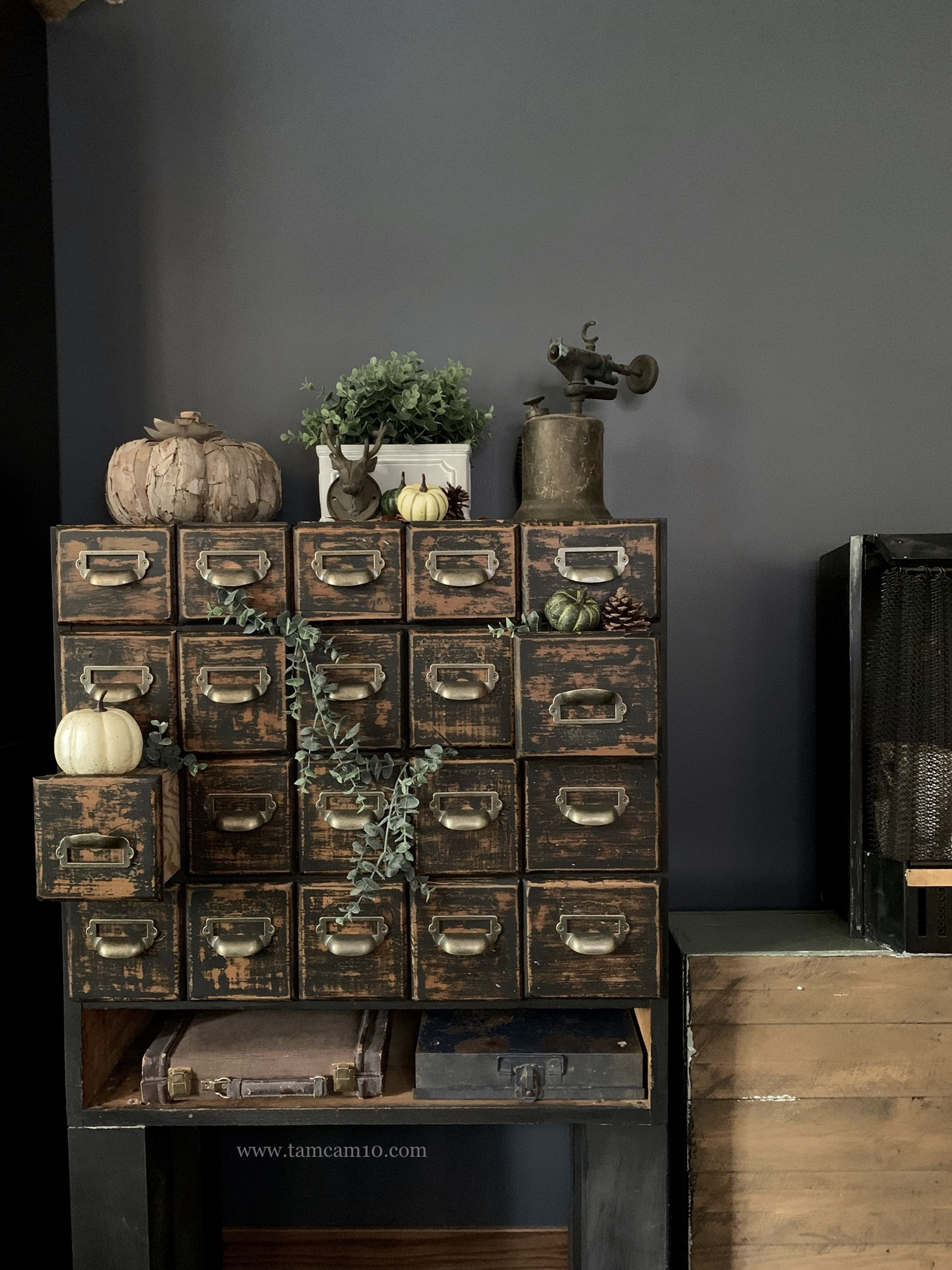 Fall Decor Ideas | Pumpkins | Hanging Eucalyptus | Library Drawers | Furniture DIY | tamcam10 | Vintage